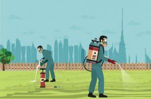 Cách sử dụng thuốc diệt côn trùng hiệu quả mà lại an toàn cho sức khỏe