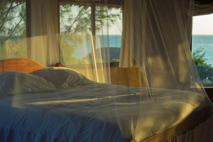 Cách đuổi muỗi trong phòng ngủ