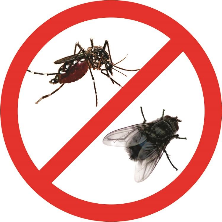 Dịch vụ diệt côn trùng Anh Thư TPHCM