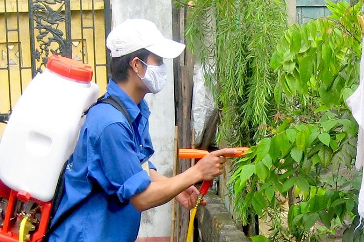 Cách diệt muỗi bằng Hóa Chất - Diệt côn trùng TPHCM