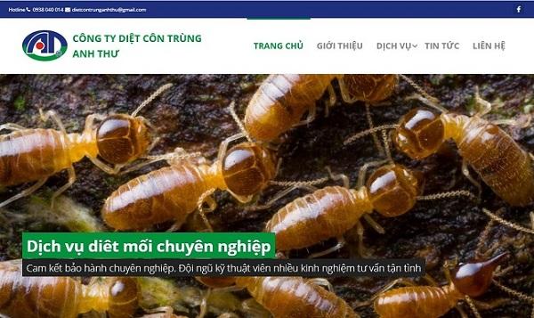 Dịch vụ diệt mối tận gốc miền núi Anh Thư - Diệt côn trùng tphcm