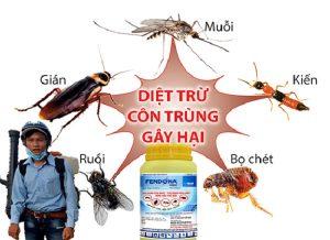 Công ty dịch vụ diệt côn trùng Bắc Ninh