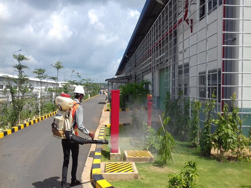 Công ty diệt côn trùng giá rẻ tại nhà ở Cà Mau