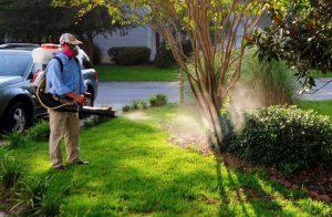 Công ty dịch vụ diệt côn trùng Hà Nam