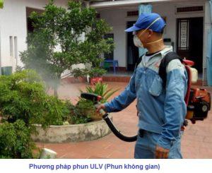 Công ty dịch vụ diệt côn trùng Khánh Hòa