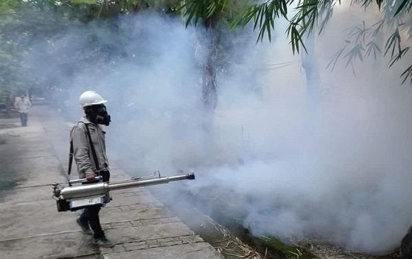 Công ty dịch vụ diệt côn trùng giá rẻ tại Kon Tum