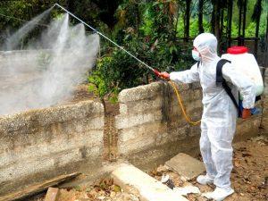 Công ty dịch vụ diệt côn trùng Lạng Sơn