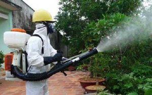 Công ty dịch vụ diệt côn trùng Ninh Bình