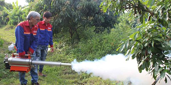 Công ty dịch vụ diệt côn trùng giá rẻ tại Phú Thọ