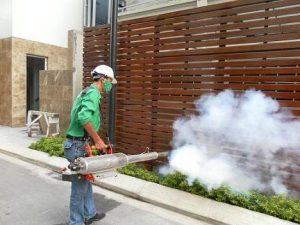 Công ty dịch vụ diệt côn trùng Quảng Nam
