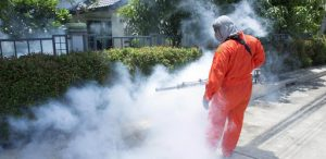 Công ty dịch vụ diệt côn trùng Quảng Ngãi