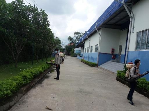 Công ty dịch vụ diệt côn trùng giá rẻ tại Quảng Ninh