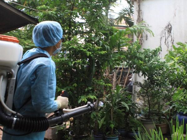 Công ty dịch vụ diệt côn trùng tận gốc tại Thái Bình
