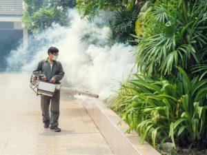 Công ty dịch vụ diệt côn trùng Vĩnh Phúc