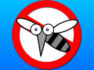 Top ứng dụng đuổi muỗi hiệu quả tại nhà có thể bạn chưa biết