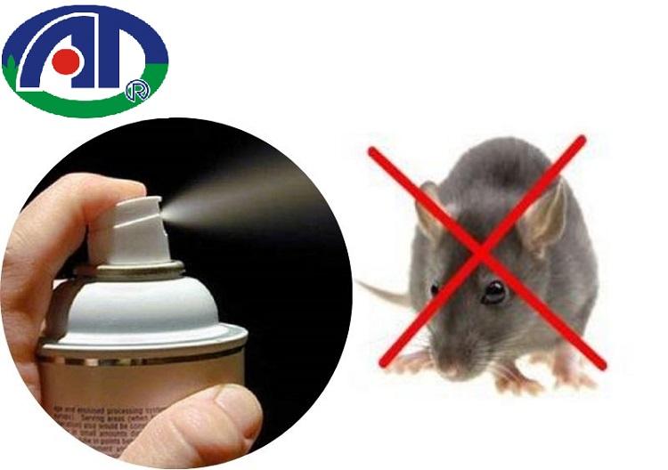 Bạn đã biết cách đuổi chuột bằng thuốc xịt muỗi này chưa?