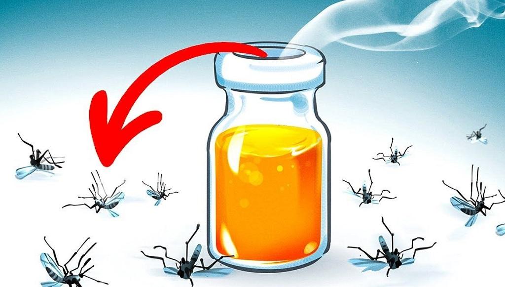 Sử dụng bẫy để diệt côn trùng